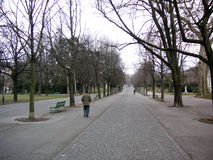 Man walking in Park. Man walking alone in a park in Geneva, Switzerland Stock Photos