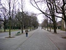 Man walking in Park. Man walking alone in a park in Geneva, Switzerland stock photos