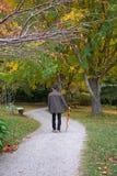 Man walking in park in autumn / fall season. Man walking along a path at a park in autumn / fall season stock photo
