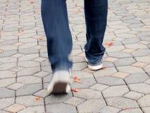 Man walking in park Royalty Free Stock Image