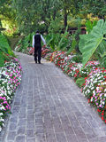Man walking on path. Strolling down a walkway Stock Image