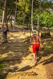 Man walking on a path in the jungle Stock Photography