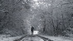 The man walking on a path between trees under snow. The man walking on a path between trees and under snowing weather stock video footage