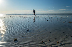 Man Walking on a Sandbar During Low Tide #2 Royalty Free Stock Photography