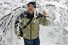 Man Walking through Snow Filled Branches 2. On a winter day, a man is walking through the woods Royalty Free Stock Photo