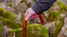 Man with walking stick Stock Photo