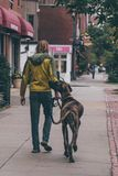 A Man Walking in The Street With His Dog Royalty Free Stock Image