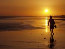Man walking at sunset. Beautifull sunset at the beach Stock Image