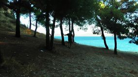 Man is Walking to the Ocean. And the trees stock video