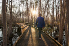 Man walking trail in early morning Royalty Free Stock Photography