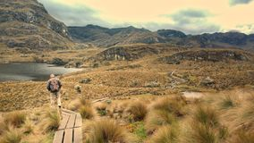 Landscape of El Cajas National Park, Ecuador royalty free stock images