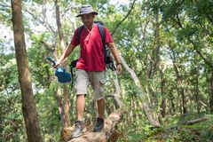 Man walking on a tree while hiking. In the woods Stock Image