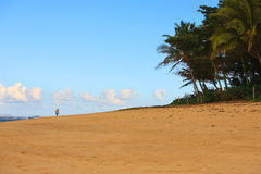 Man Walking on a Tropical Beach Royalty Free Stock Photo