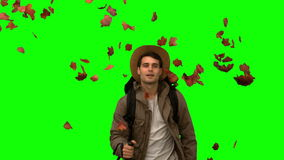 Man walking under leaves falling on green screen Royalty Free Stock Photo