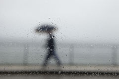 Man walking under the rain Royalty Free Stock Images