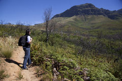 Man walking up a mountain. In south africa Royalty Free Stock Photos