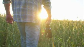 A man walking on a wheat field with two bottles of beer on a hot day. at sunset. Sun lens flare. slow-motion, close-up. A man walks on a wheat field with two stock video footage