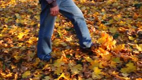 Man walks along autumn forest path strewn with fallen leaves. stock video footage