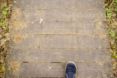 Man walks along an ecological path made of boards, in the forest. Man walks along an ecological path made of boards, in a summer forest Stock Photography