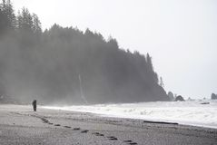 Man walks beach in mist. Man walks along a misty beach leaving footprints Stock Image