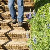 A man walks down the aged concrete stairs at the garden Stock Image