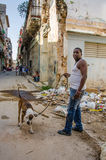 Man walks his dog in Old Havana, Cuba Royalty Free Stock Photo
