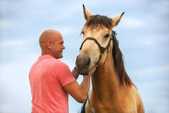 A man walks with his horse. Photo bald man walks with a horse in the field Royalty Free Stock Images