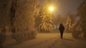 Man walks on snowy path in winter park at night. Man walks on snowy path in winter park stock video