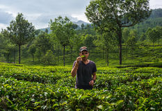 Man walks through tea plantations in the mountains of the bride in green tea and admires Royalty Free Stock Photo