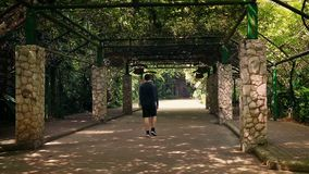 Man Walks Under Huge Canopy In Park. Man walking underneath dense canopy in park with tropical plants stock video footage