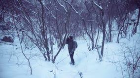 Man wandering in snowy woods stock footage
