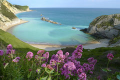 Man of War Bay near Durdle Door Royalty Free Stock Images
