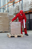 Man in warehouse royalty free stock photography