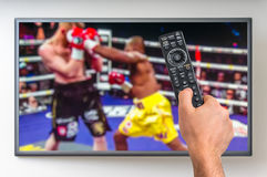 Man is watching boxing match on TV royalty free stock photography