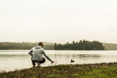 Man watching feeding ducks standing at lake of two rivers algonquin national park Ontario Canada grey morning atmosphere Royalty Free Stock Photo