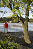 Man watching floodwater, Launceston, Tasmania Royalty Free Stock Image