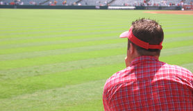 Man Watching Game. A man watching a baseball game Stock Photo
