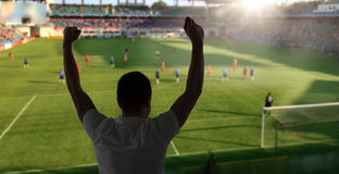 Man watching soccer of football game on stadium Royalty Free Stock Photography