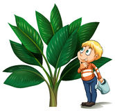 Man with watering can looking at the tree. Illustration Royalty Free Stock Images
