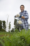 Man Watering Crops In Field Stock Photo