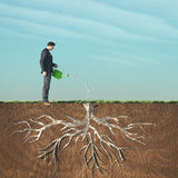 Man watering. With watering a dried root.This is a 3d render illustration Royalty Free Stock Image