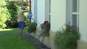 Man watering flower in pot hanging on wall house at summer. 4K stock footage