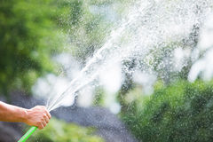 Man watering the garden from hose Stock Photo