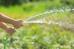 Man watering the garden from hose Royalty Free Stock Images