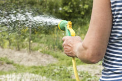 Man watering the garden stock image