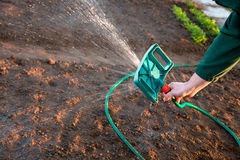Man watering the ground Royalty Free Stock Photos
