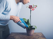 Man watering orchid with water pistol Stock Photography