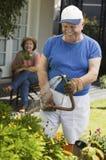 Man Watering Plants In Garden Stock Images