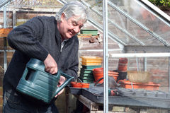 Man watering pots in a greenhouse. royalty free stock photography