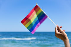 Man waving a small rainbow flag Stock Images